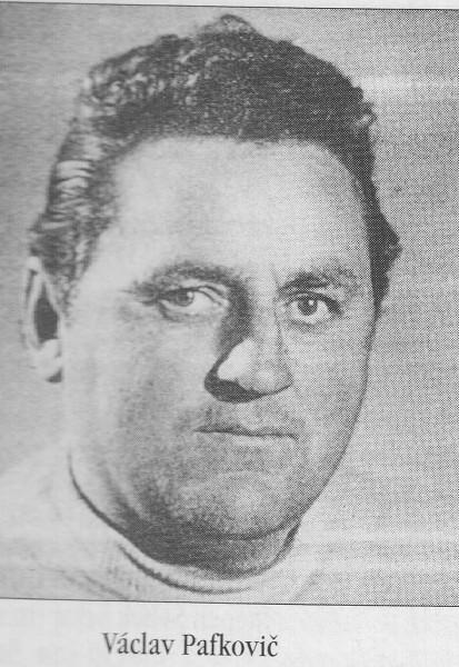 Pavkovič portrét
